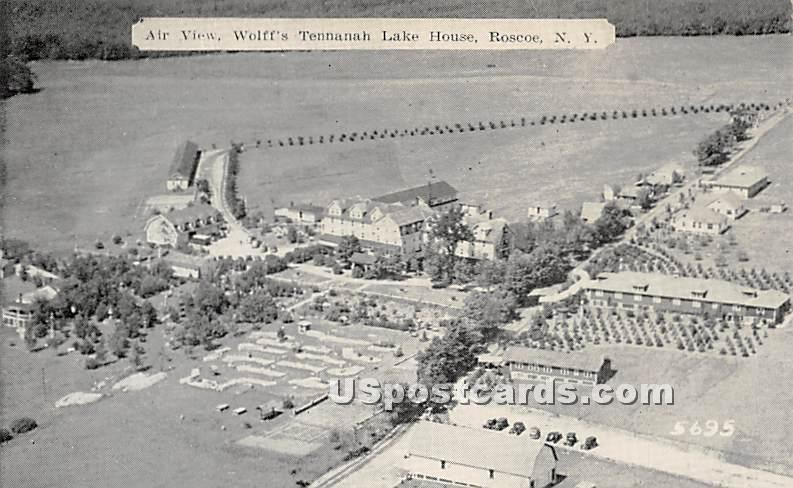 Air View - Roscoe, New York NY Postcard