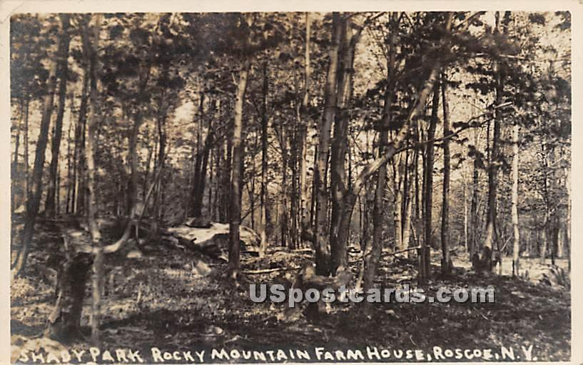 Shady Park Rocky Mountain Farm House - Roscoe, New York NY Postcard