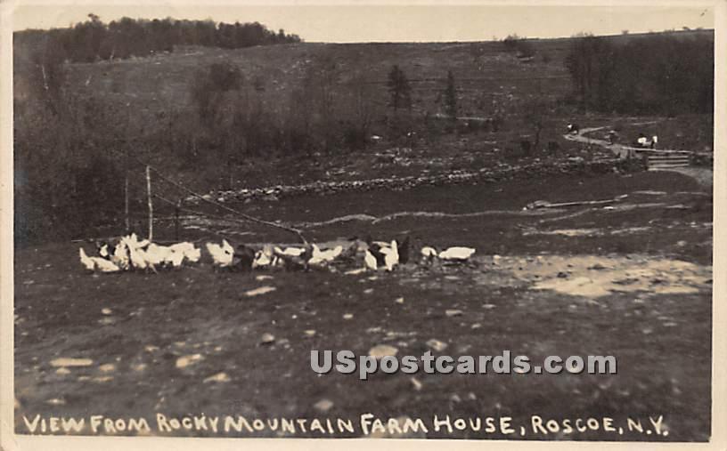 View From Rocky Mountain Farm House - Roscoe, New York NY Postcard
