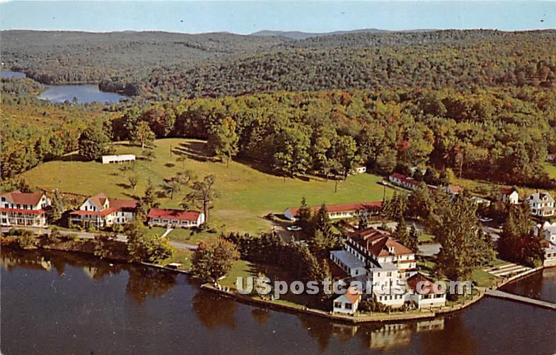 Rieping's Lodge - Roscoe, New York NY Postcard