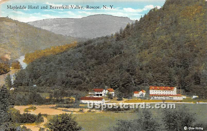 Mapledale Hotel and Beaverkill Valley - Roscoe, New York NY Postcard