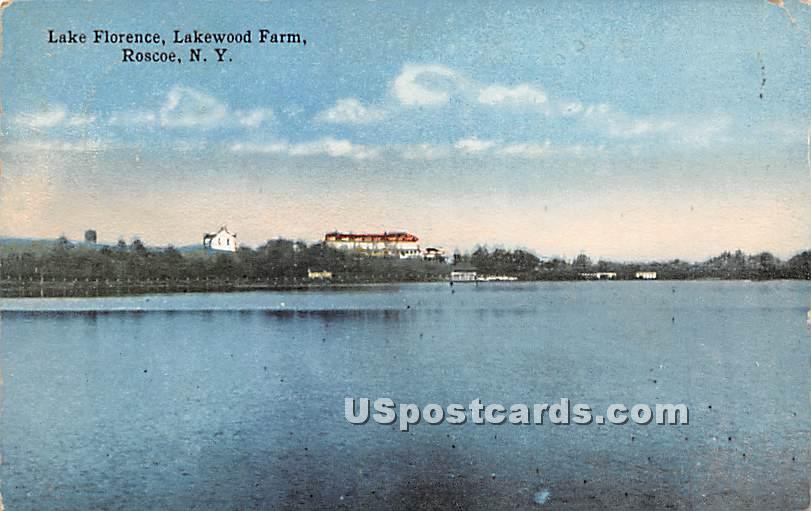 Lake Florence - Roscoe, New York NY Postcard