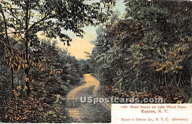 Road Scene - Roscoe, New York NY Postcard