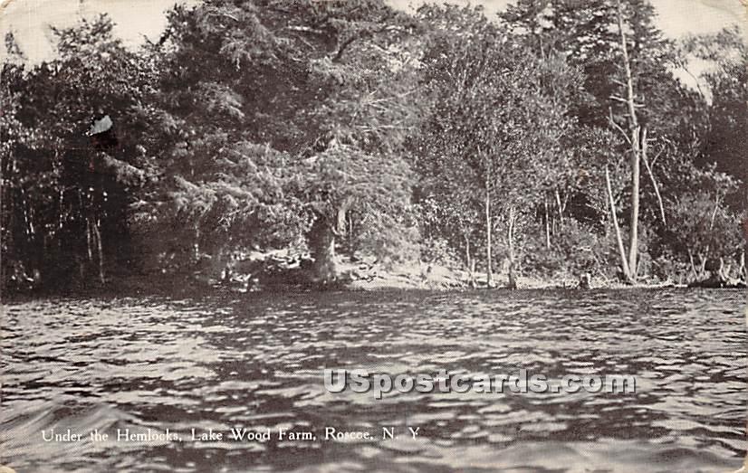 Under the Hemlocks - Roscoe, New York NY Postcard