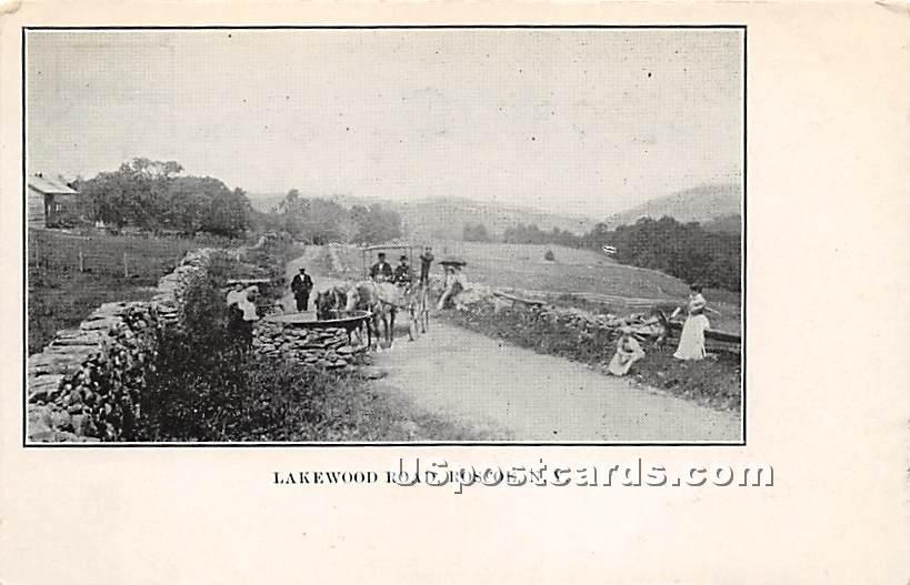 Lakewood Road - Roscoe, New York NY Postcard