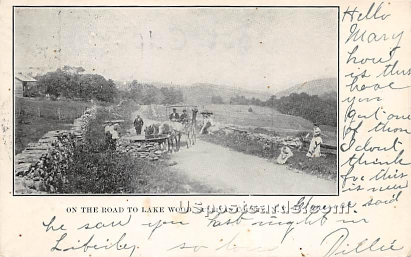 On the Road to Lake Wood - Roscoe, New York NY Postcard