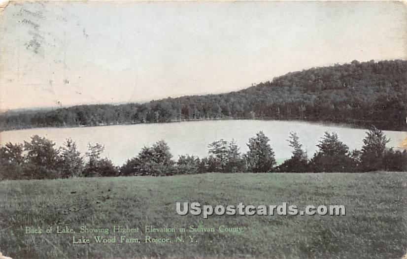 Back of Lake - Roscoe, New York NY Postcard