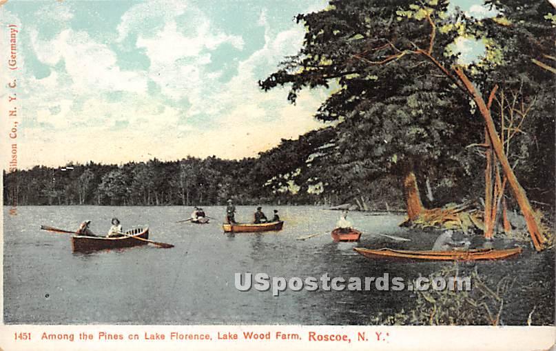 Among the Pines on Lake Florence - Roscoe, New York NY Postcard