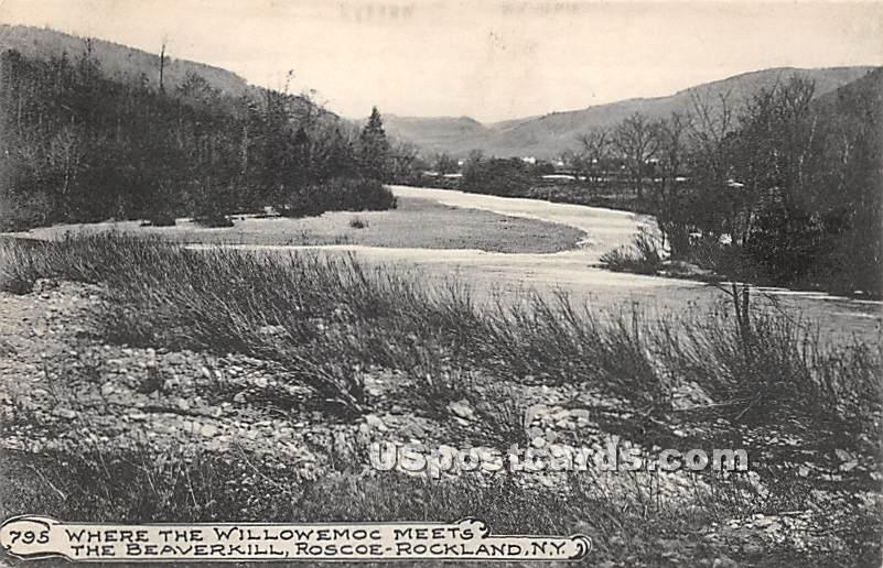 Where the Willowemoc Meets - Roscoe, New York NY Postcard