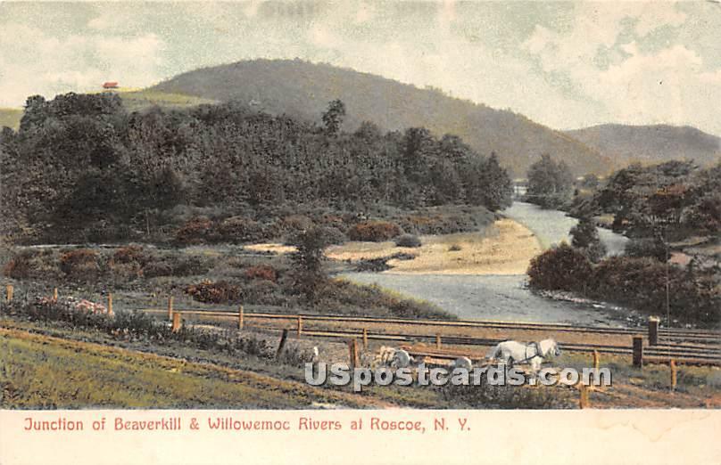 Junction of Beaverkill & Willowemoc Rivers - Roscoe, New York NY Postcard