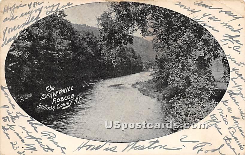 The Beaverkill - Roscoe, New York NY Postcard