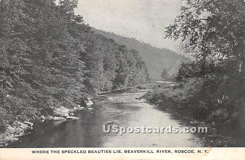 Where the Speckled Beauties Lie - Roscoe, New York NY Postcard