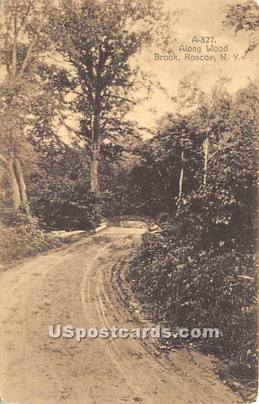 Along Wood Brook - Roscoe, New York NY Postcard