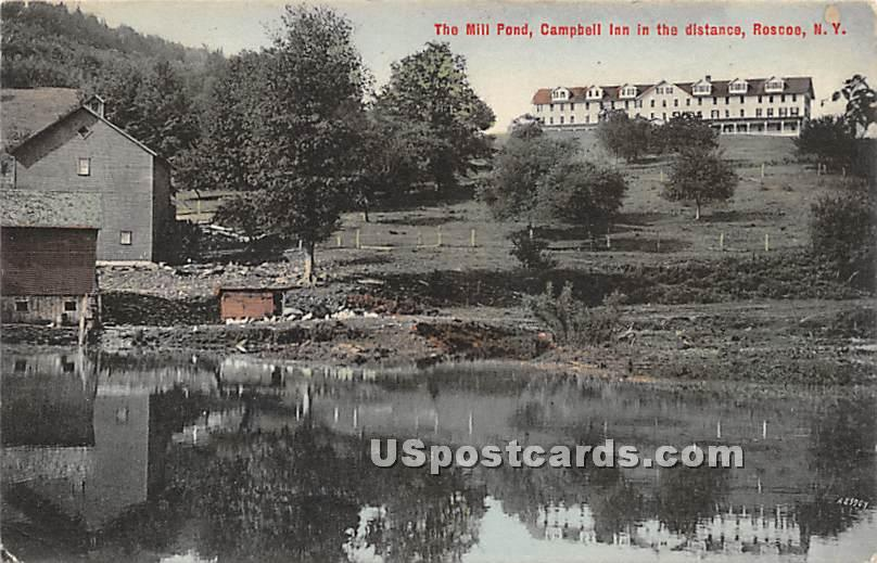 The Mill Pond - Roscoe, New York NY Postcard