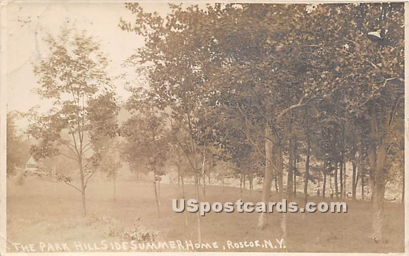 The Park Hillside Summer Home - Roscoe, New York NY Postcard