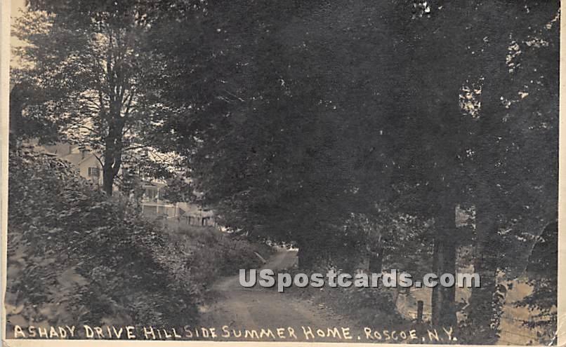 A Shady Drive - Roscoe, New York NY Postcard
