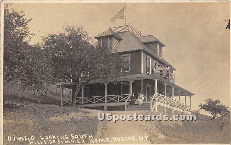 Bungalow Looking South - Roscoe, New York NY Postcard