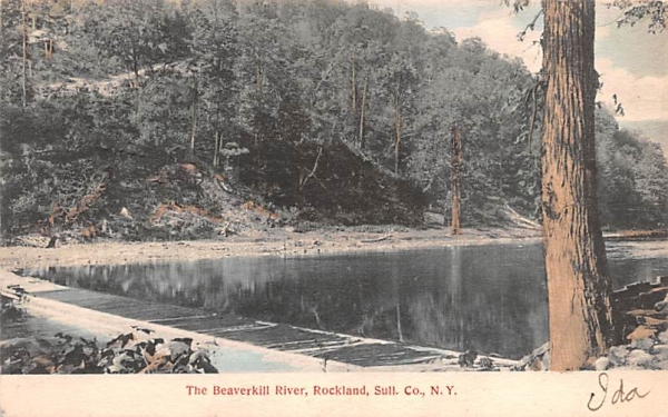 The Beaverkill River Rockland, New York Postcard
