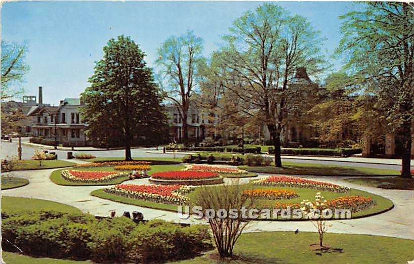 Tulips in Plymouth Park - Rochester, New York NY Postcard