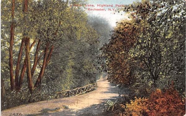 Lovers' Lane Rochester, New York Postcard