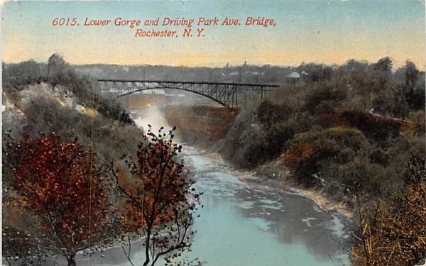 Lower Gorge Rochester, New York Postcard