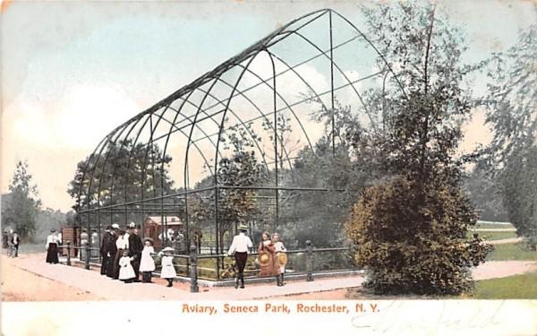 Aviary Rochester, New York Postcard