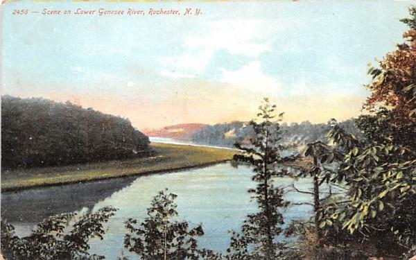 Lower Genesee River Rochester, New York Postcard