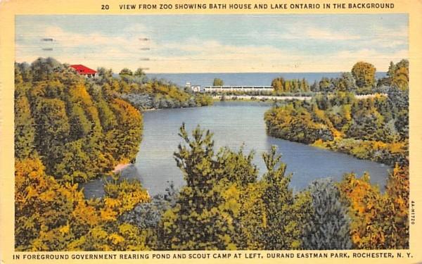 Durand Eastman Park Rochester, New York Postcard