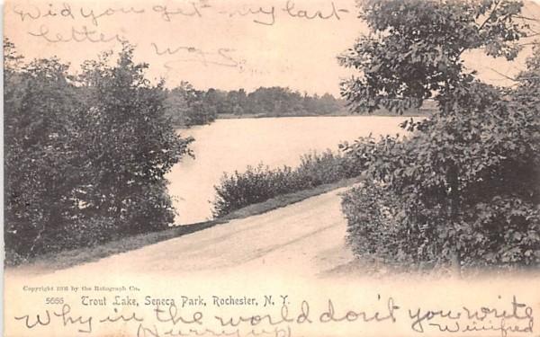 Trout Lake Rochester, New York Postcard