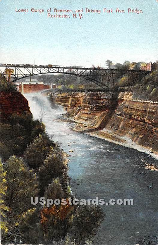 Lower Gorge - Rochester, New York NY Postcard