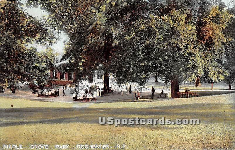 Maple Grove Park - Rochester, New York NY Postcard