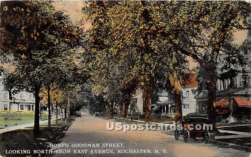 North Goodman Street - Rochester, New York NY Postcard
