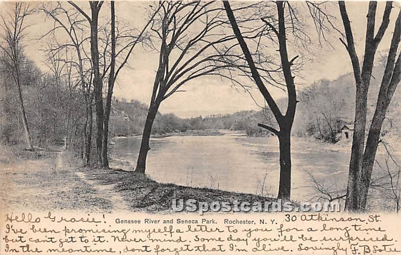Genesee River, Seneca Park - Rochester, New York NY Postcard