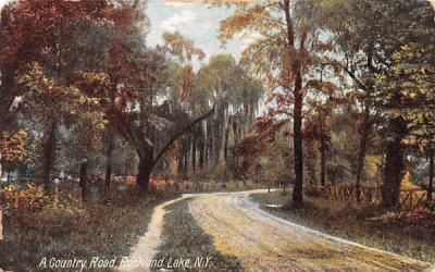 Country Road Rockland Lake, New York Postcard