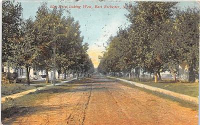 Elm Street Rochester, New York Postcard