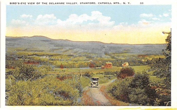 Delaware Valley Stamford, New York Postcard