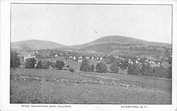 Mine Mountain & Village Stamford, New York Postcard