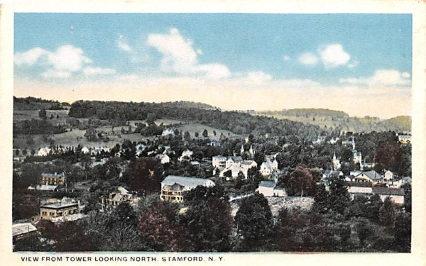 From Tower Looking North Stamford, New York Postcard
