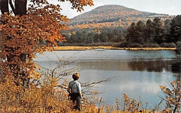 Utsayantha Lake Stamford, New York Postcard