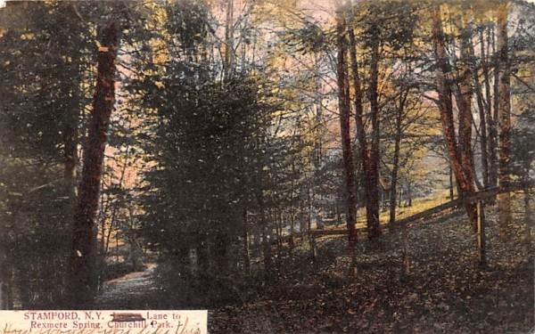 Lane to Rexmere Spring Stamford, New York Postcard