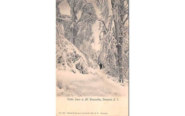 Winter Scene Stamford, New York Postcard