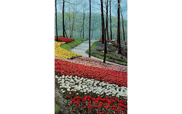 Sterling Forest Gardens New York Postcard
