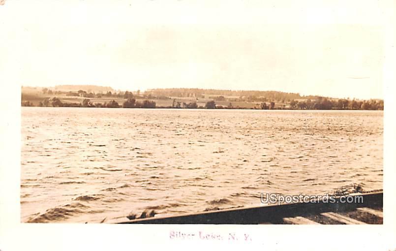 Lake View - Silver Lake, New York NY Postcard