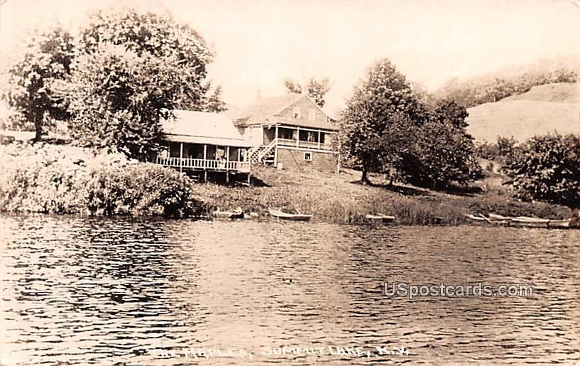 The Maples - Summit Lake, New York NY Postcard