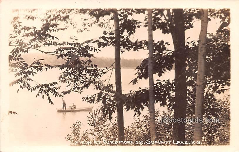 View at Airdmore - Summit Lake, New York NY Postcard