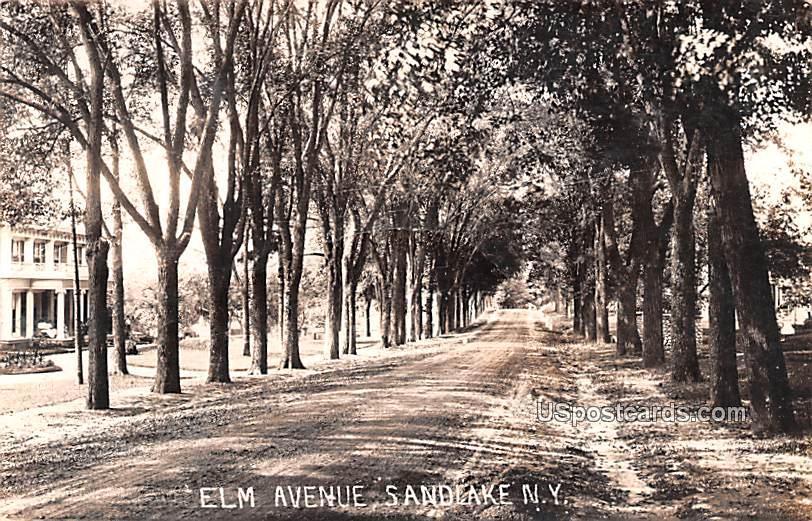 Elm Avenue - Sandlake, New York NY Postcard
