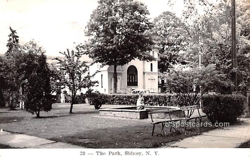 The Park - Sidney, New York NY Postcard