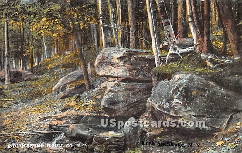 Indian Spring - Sullivan County, New York NY Postcard