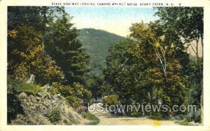 Walnut Ridge - Stony Creek, New York NY Postcard