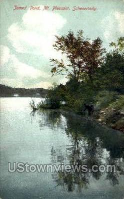 James' Pond - Schenectady, New York NY Postcard